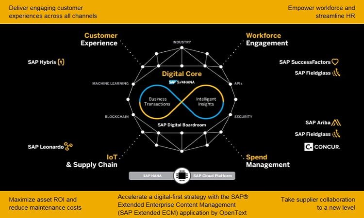 SAP Digital Business Framework